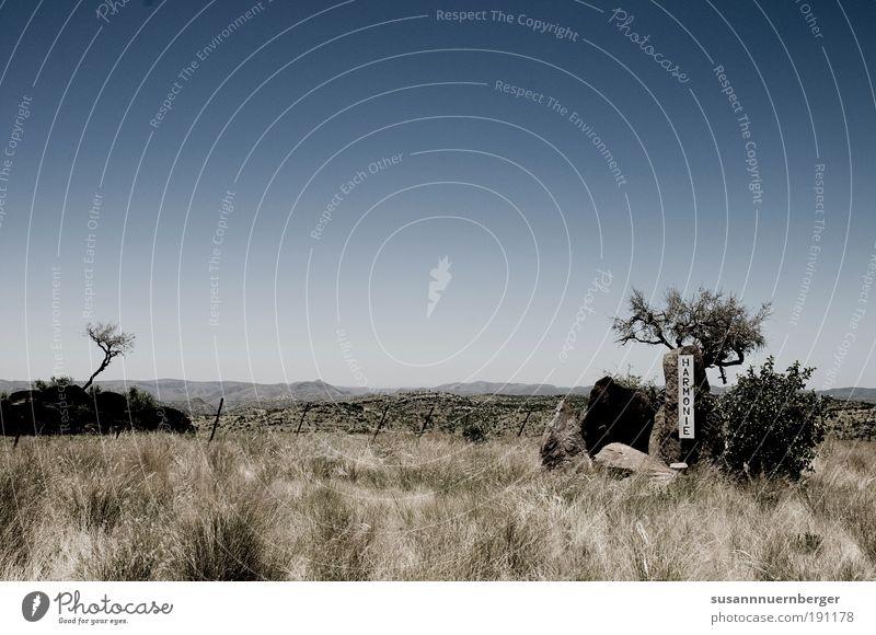 Namibia – thelandofbrave Umwelt Natur Landschaft Pflanze Tier Wolkenloser Himmel Sommer Schönes Wetter Wildpflanze exotisch Savanne Zufriedenheit Einigkeit