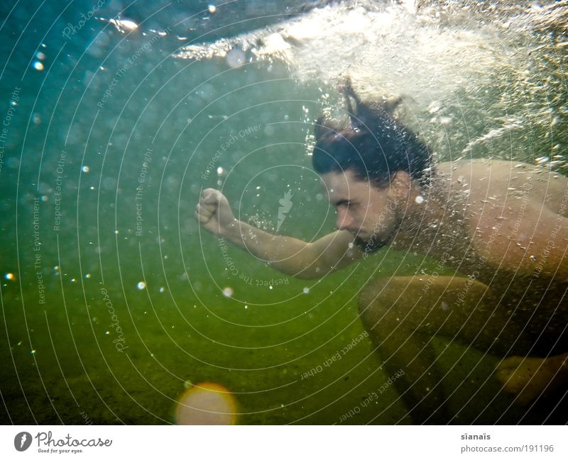 wassersport Mensch Wasser Meer Sommer Spielen See Schwimmen & Baden Kraft maskulin Geschwindigkeit tauchen Konzentration anstrengen Willensstärke Verlauf