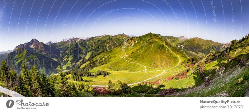 panoramic of kleinwalser velley - austria - europa Himmel Natur Ferien & Urlaub & Reisen Pflanze Sommer Sonne Baum Blume Landschaft Erholung Einsamkeit ruhig Freude Ferne Wald Berge u. Gebirge