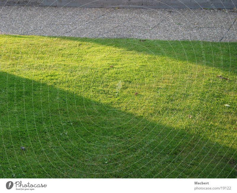 Grünstreifen grün Streiflicht Bürgersteig Rasen Sonne Schatten