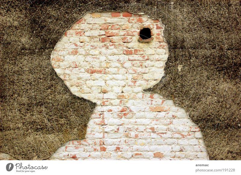 Was bin ich? Haus Bauwerk Architektur Mauer Wand Backstein alt kaputt ästhetisch Zerstörung Putzfassade Figur verwittert Farbfoto Gedeckte Farben Außenaufnahme