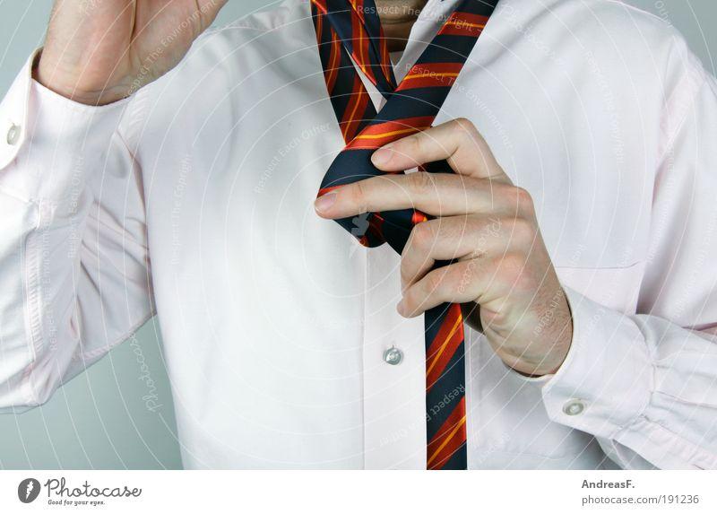 Einfacher Windsor? Mensch Mann Hand Erwachsene Stil Mode Beruf maskulin elegant Erfolg Hemd Brust Anzug Wirtschaft Krawatte seriös