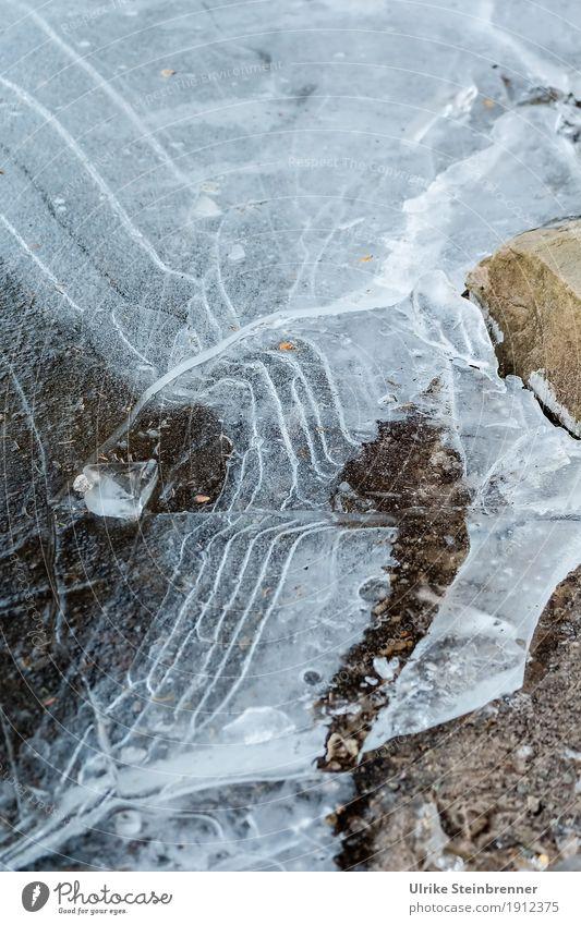 Zugefroren Umwelt Natur Wasser Winter schlechtes Wetter Eis Frost Seeufer Teich frieren glänzend dünn kalt nass natürlich Spitze Bewegung bedrohlich Netzwerk