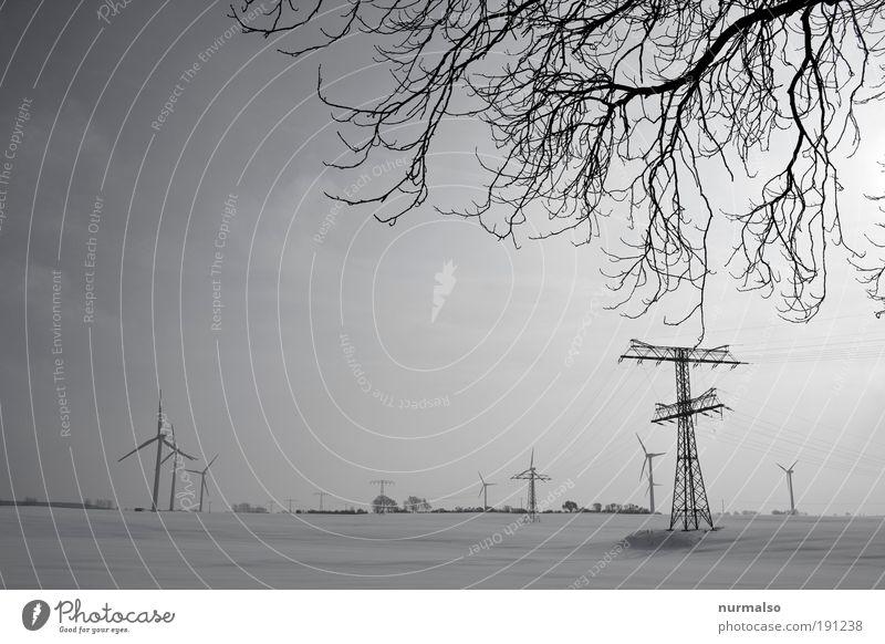 Stromzuwachs Natur Baum Ferien & Urlaub & Reisen Winter kalt Schnee Umwelt Landschaft Eis Horizont Feld Ausflug Energie Energiewirtschaft Tourismus Klima