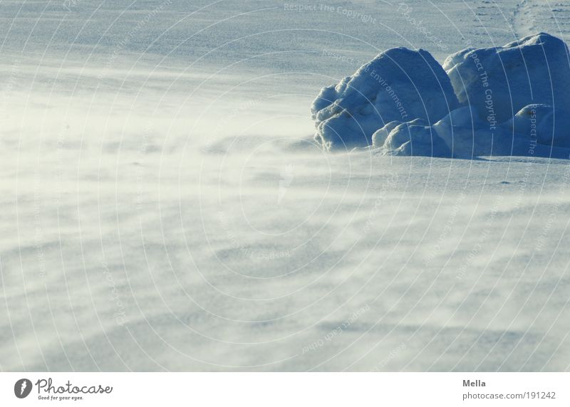Rauhe Schneesee Umwelt Natur Landschaft Urelemente Winter Klima Klimawandel Wetter schlechtes Wetter Unwetter Wind Sturm Eis Frost kalt natürlich wild wehen
