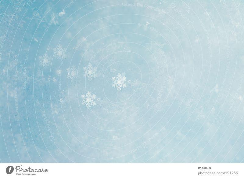 snow-flake Natur blau Weihnachten & Advent weiß schön Ferien & Urlaub & Reisen ruhig Winter Erholung kalt Schnee Stil Schneefall hell Zufriedenheit Eis