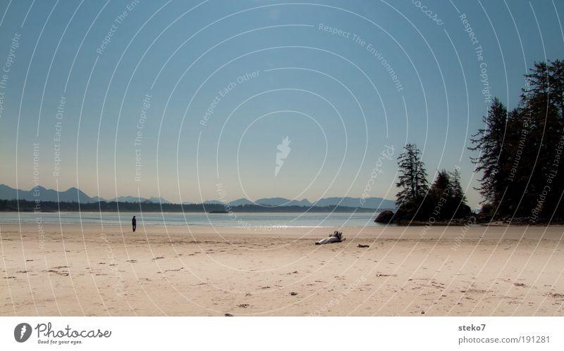 Strandläufer Sommer Sommerurlaub Sonne Meer Küste Erholung genießen Ferne frei Unendlichkeit hell Wärme Horizont Natur Kanada Tofino Long Beach Vancouver Island