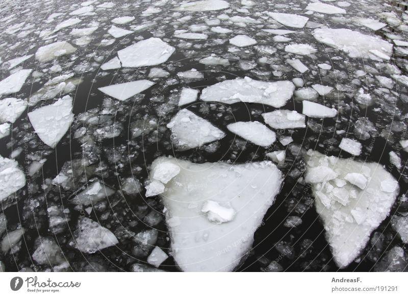 arktisches Berlin Winter Umwelt Natur Landschaft Wasser Klima Klimawandel Schnee Fluss kalt Eis Eisscholle Spree Frost Fischauge Im Wasser treiben Eisbrecher