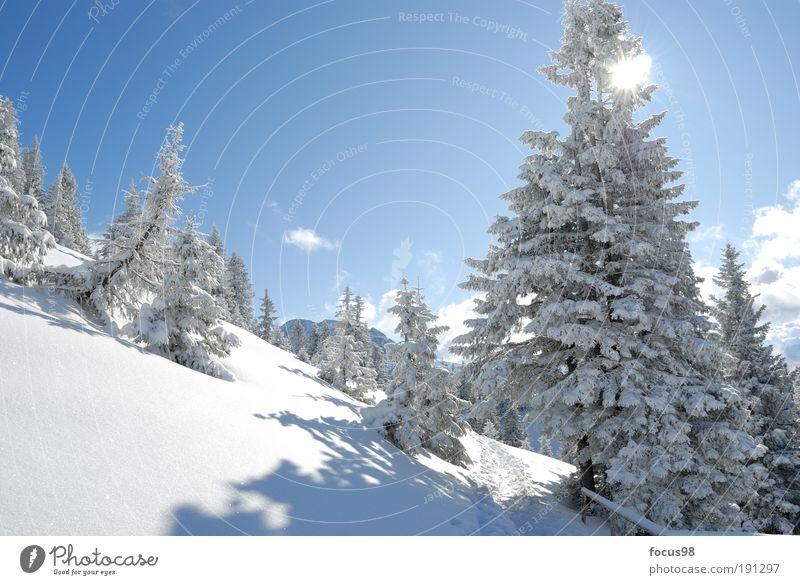Wintermärchen Umwelt Natur Landschaft Himmel Wolken Sonne Schönes Wetter Schnee Baum Wald Alpen Berge u. Gebirge Schneebedeckte Gipfel Einsamkeit Erholung