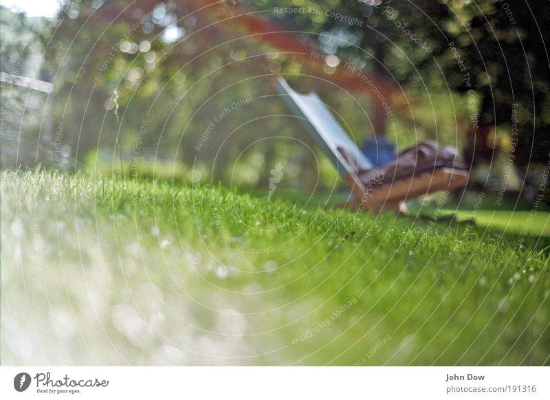 Platz an der Sonne Sommer Ferien & Urlaub & Reisen ruhig Erholung Wiese Gras Garten Park Zufriedenheit Freizeit & Hobby Sonnenstrahlen analog Schönes Wetter