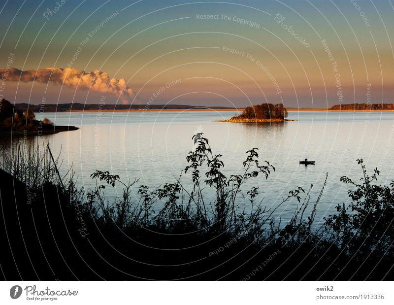 Gestörte Idylle Umwelt Natur Landschaft Pflanze Wasser Wolkenloser Himmel Horizont Herbst Klima Schönes Wetter Sträucher Insel See Umweltverschmutzung Ferne