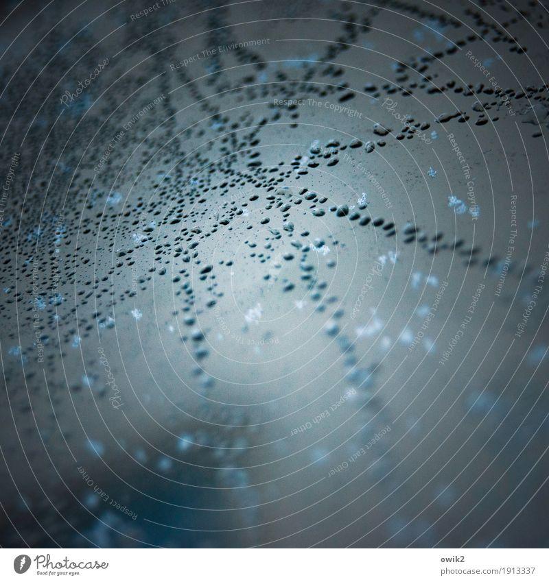 Sternenspur Umwelt Natur Wassertropfen Himmel Winter Klima Schönes Wetter Eis Frost Glas Zusammensein klein nah viele verrückt gefroren Eisblumen Linie bizarr