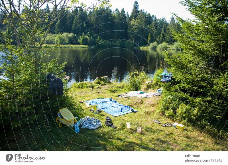 verlassener Picknick Platz Sommer Sonne Natur Baum Wald Teich See grün Einsamkeit chaotisch Umweltschutz Etang de Royes Europa Freiberge Gewässer Jura Moorsee