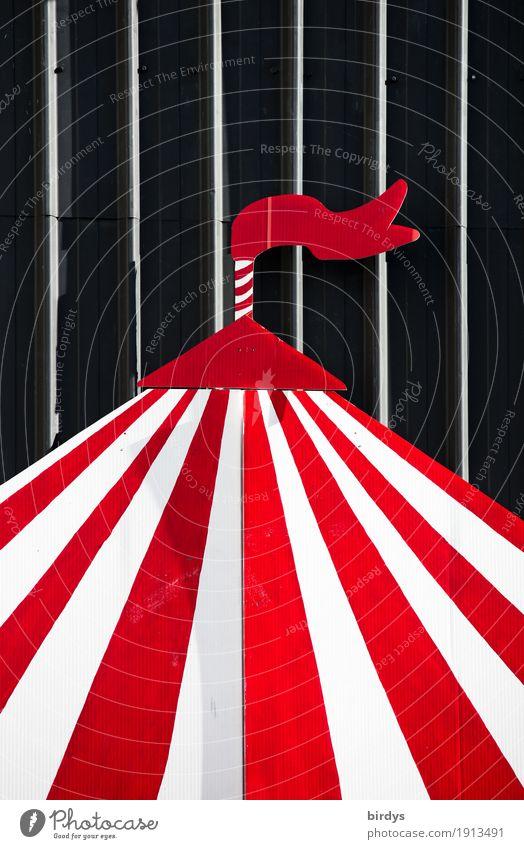 Zirkuswelt Häusliches Leben Kunst Kultur Veranstaltung Show Open Air Zirkuszelt Dach Linie Streifen ästhetisch Freundlichkeit lustig positiv rot schwarz weiß