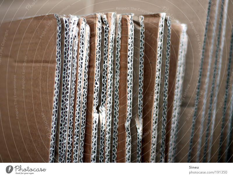 Endlich raus hier ... braun Wohnung Güterverkehr & Logistik fest Umzug (Wohnungswechsel) leicht Handel Karton Kiste Renovieren Textfreiraum links Verpackung
