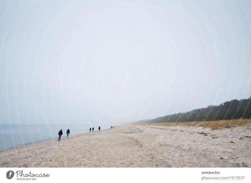 Ungefähr zehn Leute am Strand Mensch Himmel Natur Ferien & Urlaub & Reisen Himmel (Jenseits) Meer Landschaft Erholung Ferne Winter Traurigkeit Herbst Küste