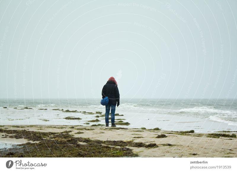 Horizont Erholung Ferien & Urlaub & Reisen Frau Mensch Spaziergang Spazierweg Einsamkeit einzeln Wind Sturm Wellen Ferne Herbst Himmel Insel Küste Landschaft