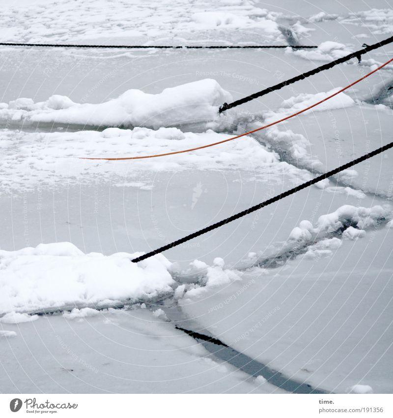 Eis am Strick Winter Seil Wasser Frost Hafen kalt grau weiß Eisscholle Anleger Schnee Bruchstelle diagonal gefroren bewegungslos Binnenhafen Museumshafen
