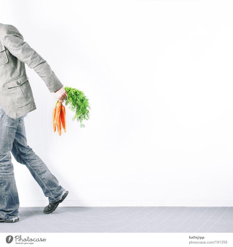 blumen für die jungs Lifestyle kaufen Häusliches Leben Wohnung Koch Mensch maskulin Mann Erwachsene Rücken Arme Hand Beine 1 Natur Pflanze Grünpflanze