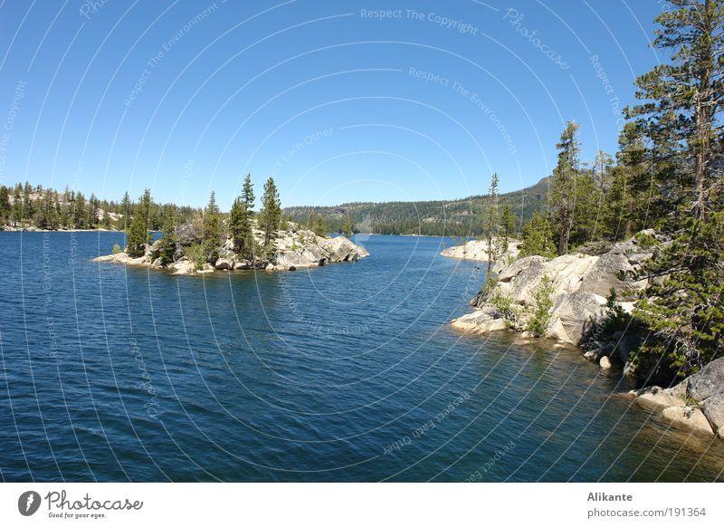 Silver Lake Natur Landschaft Urelemente Wasser Wolkenloser Himmel Sommer Schönes Wetter Baum Wildpflanze Wald Felsen Berge u. Gebirge Insel See atmen Erholung