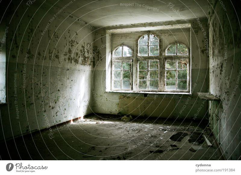Zimmer mit Waldblick ruhig Einsamkeit Leben Wand Stil Fenster träumen Mauer Raum Design Innenaufnahme Zeit Gebäude Lifestyle Wandel & Veränderung