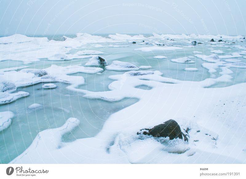 Ostseeküste Umwelt Natur Landschaft Urelemente Luft Wasser Himmel Wolkenloser Himmel Horizont Winter Klima Wetter Nebel Eis Frost Schnee Küste Meer Stein kalt