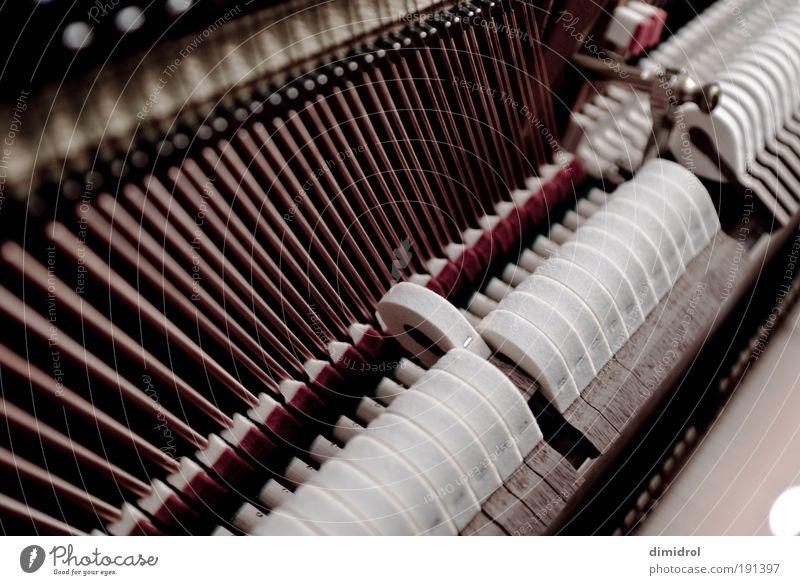 Piano / Klavier / Innenleben Bildung Studium Arbeitsplatz Kunst Musik Keyboard Musik hören Spielen modern Originalität verrückt schön rot schwarz weiß Takt