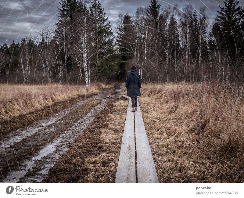 laufsteg Mensch feminin 1 Natur Landschaft Urelemente Erde Himmel Wolken Herbst Winter Wald Moor Sumpf wandern Vertrauen Sicherheit Steg Holz trocken