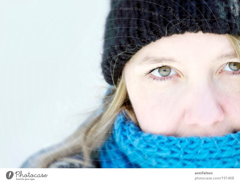 Klarer Blick Mensch Jugendliche weiß blau Winter Gesicht schwarz Auge kalt feminin Haare & Frisuren grau Kopf Eis hell Haut