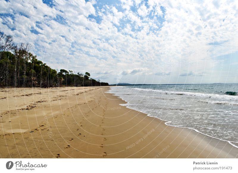 wo sind wir nur? Himmel Natur Sonne Sommer Strand Ferien & Urlaub & Reisen Meer Wolken Einsamkeit Ferne Wald Erholung Freiheit Landschaft Umwelt Glück
