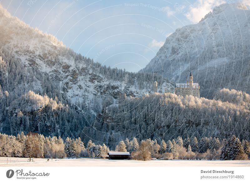 Schloss Neuschwanstein Himmel Ferien & Urlaub & Reisen blau weiß Landschaft Wolken Winter Wald Berge u. Gebirge gelb Schnee Tourismus Ausflug wandern Eis