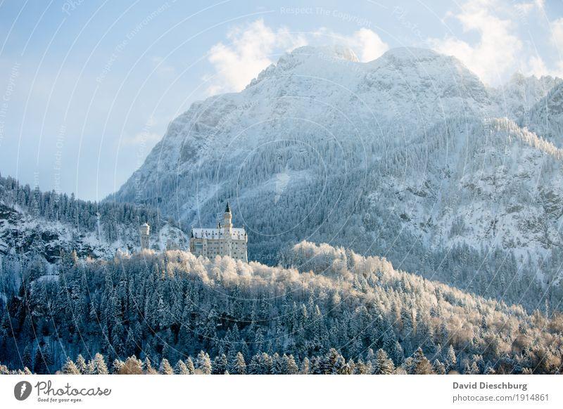 Schloss Neuschwanstein Himmel Natur Ferien & Urlaub & Reisen blau weiß Landschaft Wolken Winter Wald Berge u. Gebirge gelb Schnee Deutschland Tourismus Felsen