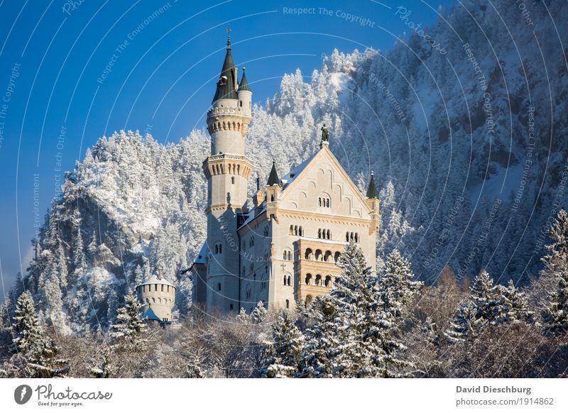 Schloss Neuschwanstein Ferien & Urlaub & Reisen Tourismus Ausflug Sightseeing Winter Schnee Winterurlaub Berge u. Gebirge Natur Landschaft Wolkenloser Himmel