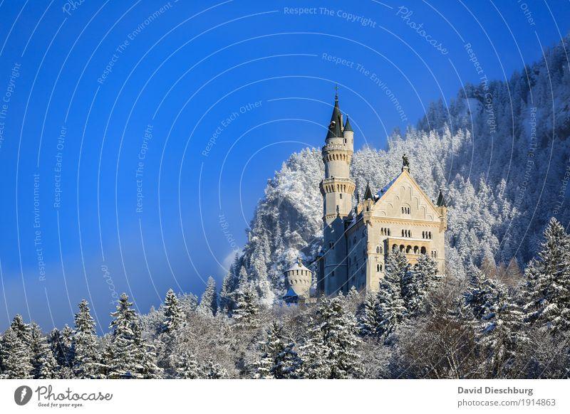 Touristenmagnet Ferien & Urlaub & Reisen Tourismus Sightseeing Natur Landschaft Winter Schönes Wetter Eis Frost Schnee Pflanze Baum Wald Berge u. Gebirge Palast