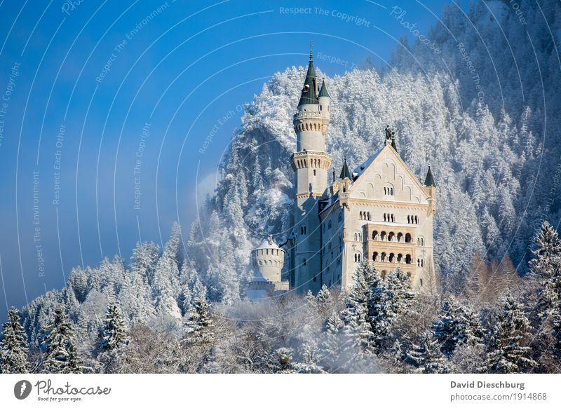 Schloss Neuschwanstein Ferien & Urlaub & Reisen Pflanze blau weiß Landschaft Winter Wald Berge u. Gebirge gelb Schnee Tourismus Ausflug wandern Eis