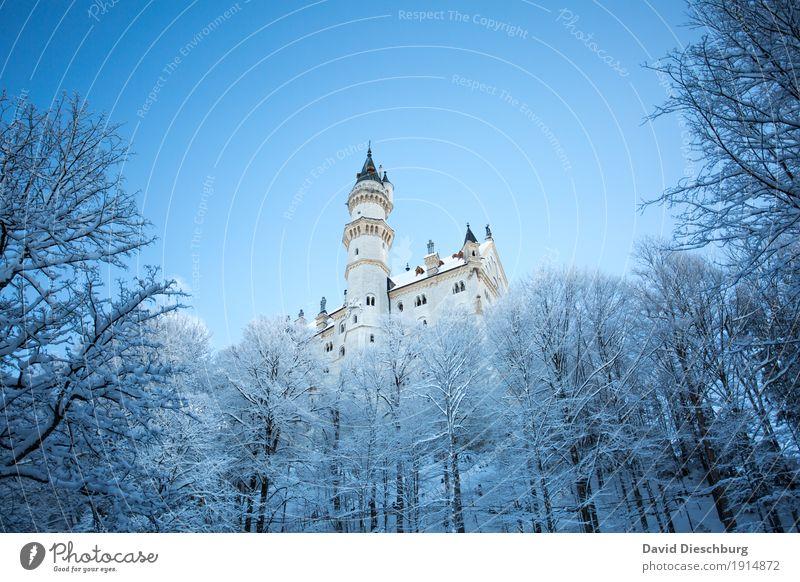 Schloss Neuschwanstein Ferien & Urlaub & Reisen Tourismus Ausflug Sightseeing Winter Schnee Winterurlaub Natur Landschaft Wolkenloser Himmel Schönes Wetter Eis