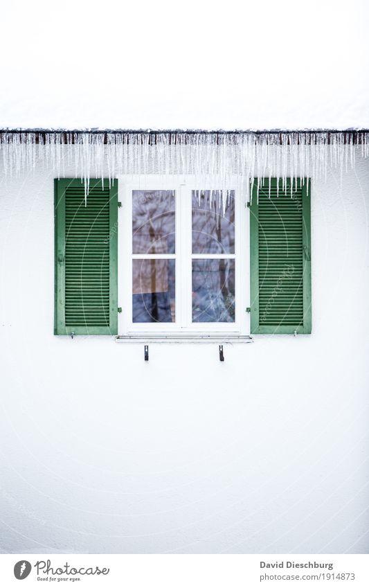 Eiszeit Ferien & Urlaub & Reisen Abenteuer Winter Winterurlaub Schönes Wetter Frost Haus Fassade Fenster Dach Dachrinne grün weiß Eiszapfen kalt gefroren