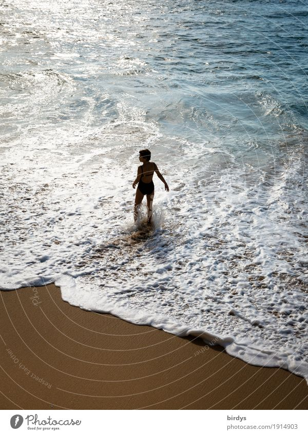 Die Frau und das Meer Mensch Ferien & Urlaub & Reisen Wasser Strand Erwachsene Leben Lifestyle feminin Schwimmen & Baden Sand Freizeit & Hobby frei Wellen