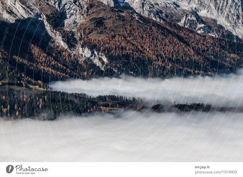 bodenlos Ferien & Urlaub & Reisen Ferne Berge u. Gebirge Natur Landschaft Pflanze Wolken Herbst Klima Nebel Wald Felsen Religion & Glaube Umwelt Wolkenschicht