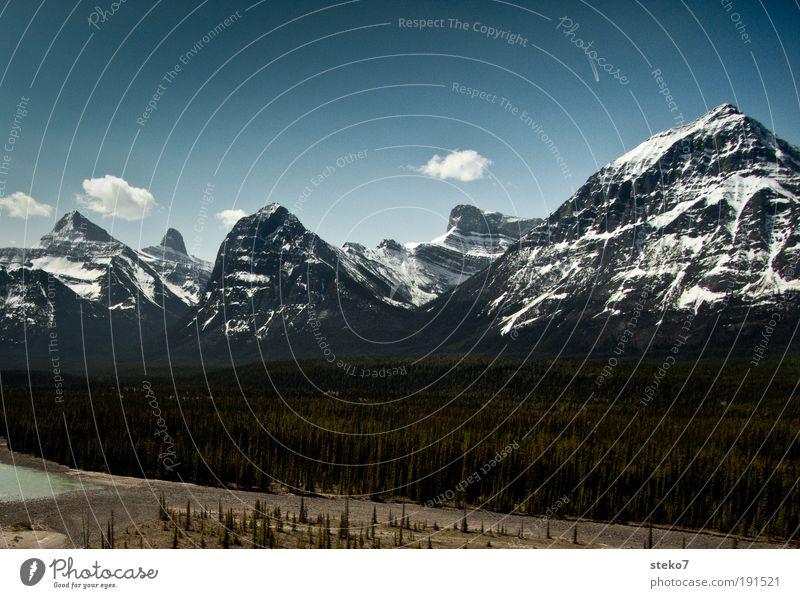 Bett sucht Fluss Natur Wolken Ferne Freiheit Berge u. Gebirge Landschaft Horizont Unendlichkeit Kanada Sommerurlaub Kiefer Alberta Amerika Schneebedeckte Gipfel