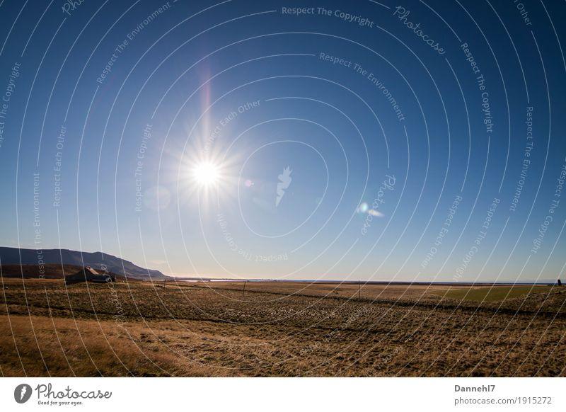 Islands Weiten Himmel Natur Ferien & Urlaub & Reisen Pflanze blau Wasser Sonne Meer Landschaft Erholung Haus Tier Ferne Berge u. Gebirge Umwelt Herbst