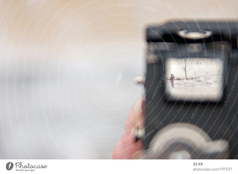 how to do a TTV Winter Erholung kalt Schnee Spielen Bewegung hell Fotografie laufen Ausflug Kommunizieren Neugier Interesse exotisch Erwartung beweglich