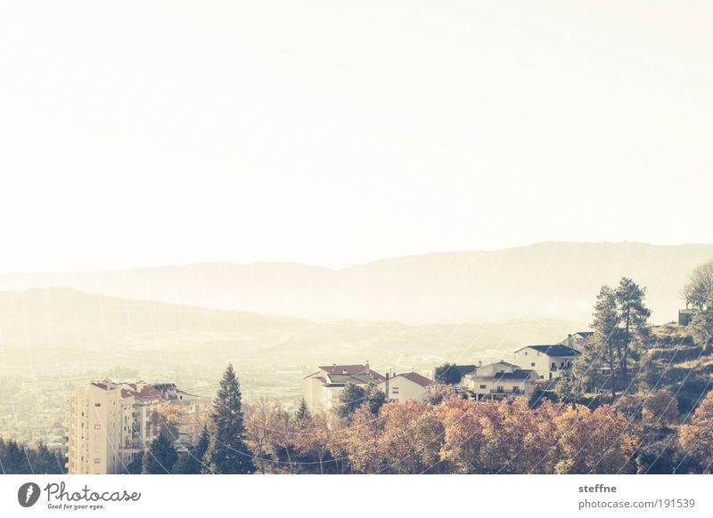 sunshine state Himmel Ferien & Urlaub & Reisen Wald Erholung Herbst Berge u. Gebirge träumen Landschaft Stimmung Umwelt Frieden einzigartig Lebensfreude