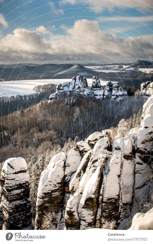 Schrammsteine wandern Landschaft Pflanze Luft Himmel Wolken Winter Eis Frost Schnee Baum Wald Berge u. Gebirge Elbsandsteingebirge Stein kalt schön blau braun