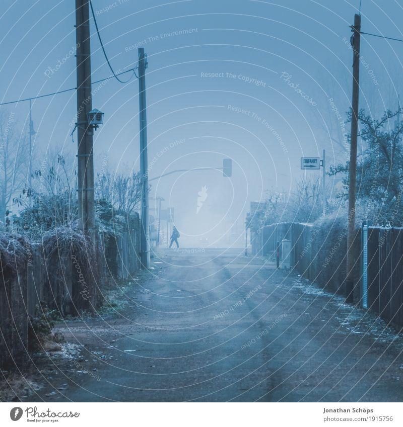 Väterchen Frost XIX Mensch Natur Pflanze blau Einsamkeit Winter Straße kalt Traurigkeit Herbst Wege & Pfade Nebel Angst Vergänglichkeit Trauer Frost