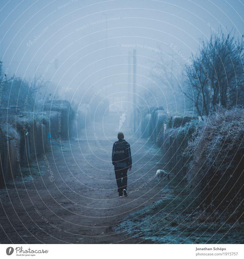 Mann mit Hund läuft auf einem Weg im dichten Nebel Winter Mensch maskulin 1 18-30 Jahre Jugendliche Erwachsene Natur Pflanze Herbst Tier Traurigkeit kalt Sorge