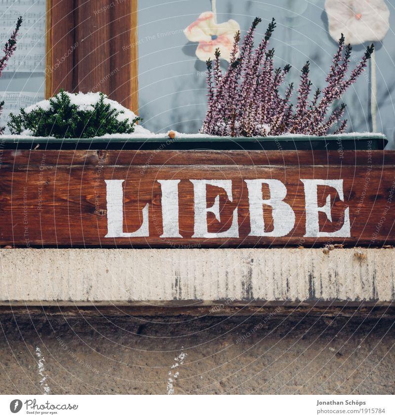 Liebe Pflanze Stadt schön weiß Haus Winter Fenster Holz Glück braun Zusammensein Freundschaft Schriftzeichen ästhetisch Fröhlichkeit