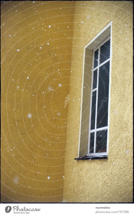 leise rieselt der . . . Natur Winter Haus kalt Fenster Umwelt Schneefall Kunst Wetter Eis Wohnung Fassade Treppe modern Hochhaus Coolness