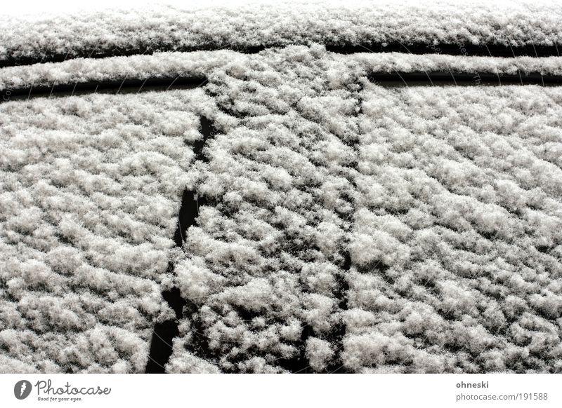 T Winter Klima Wetter schlechtes Wetter Eis Frost Schnee Fenster Tür Verkehr Personenverkehr Straßenverkehr Autofahren Fahrzeug PKW kalt schwarz weiß