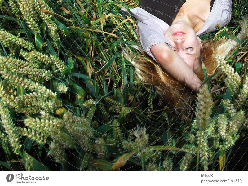 Ces im Feld Mensch Natur Jugendliche Pflanze Sommer ruhig Gesicht Erwachsene Erholung Herbst Freiheit Haare & Frisuren Glück wild schlafen